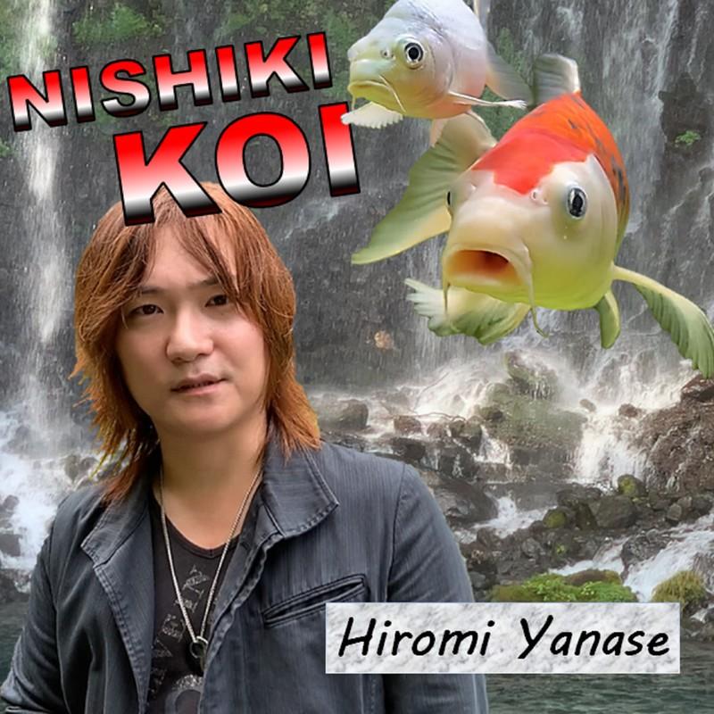 NISHIKI KOI