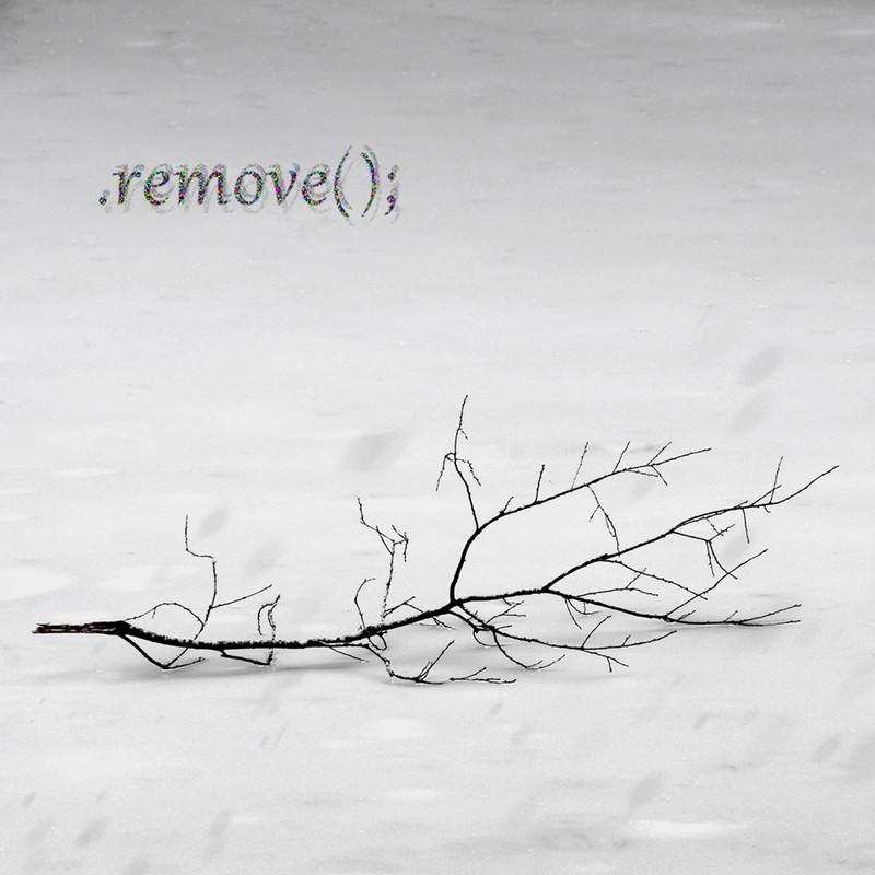 .remove () ;