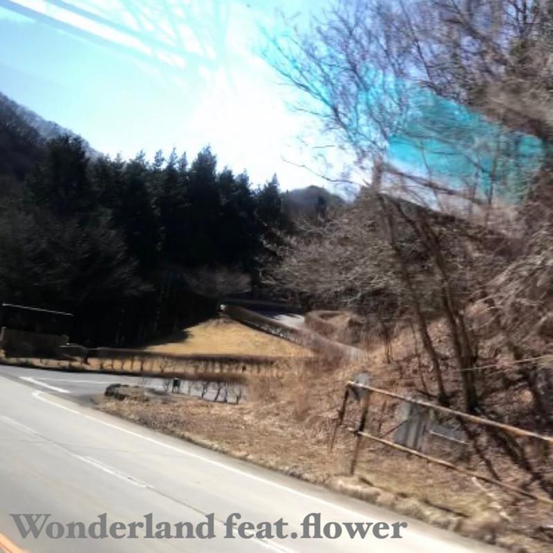Wonderland (feat. flower)