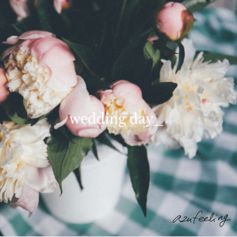 wedding day (Reggae Ver.)