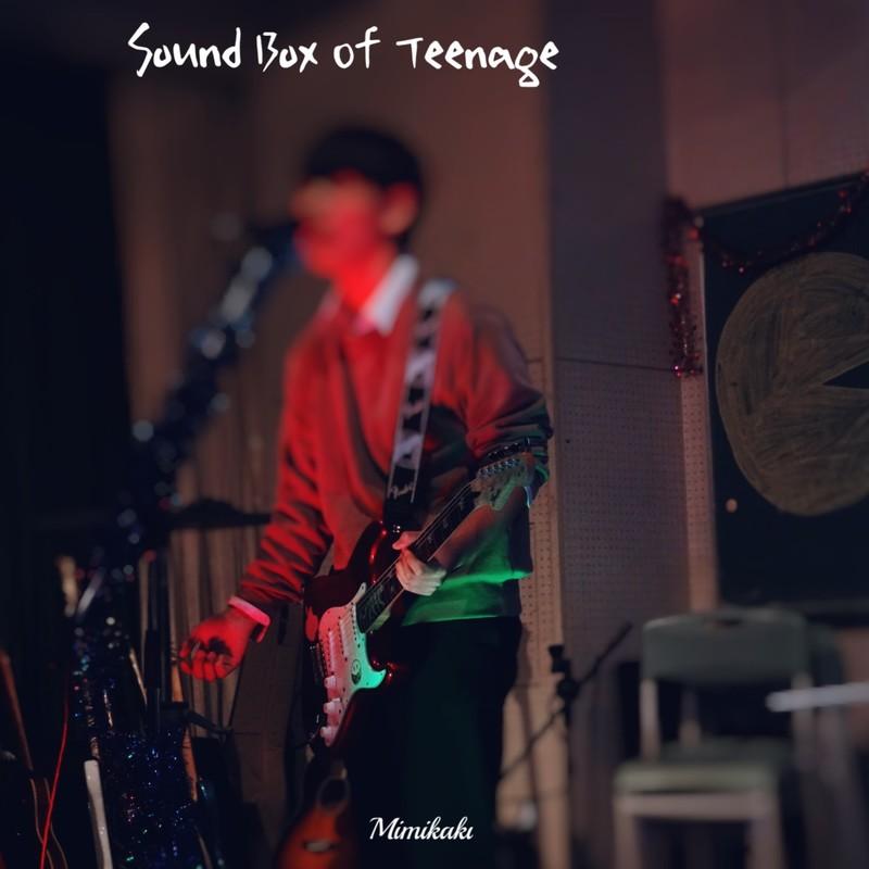 Sound Box Of Teenage