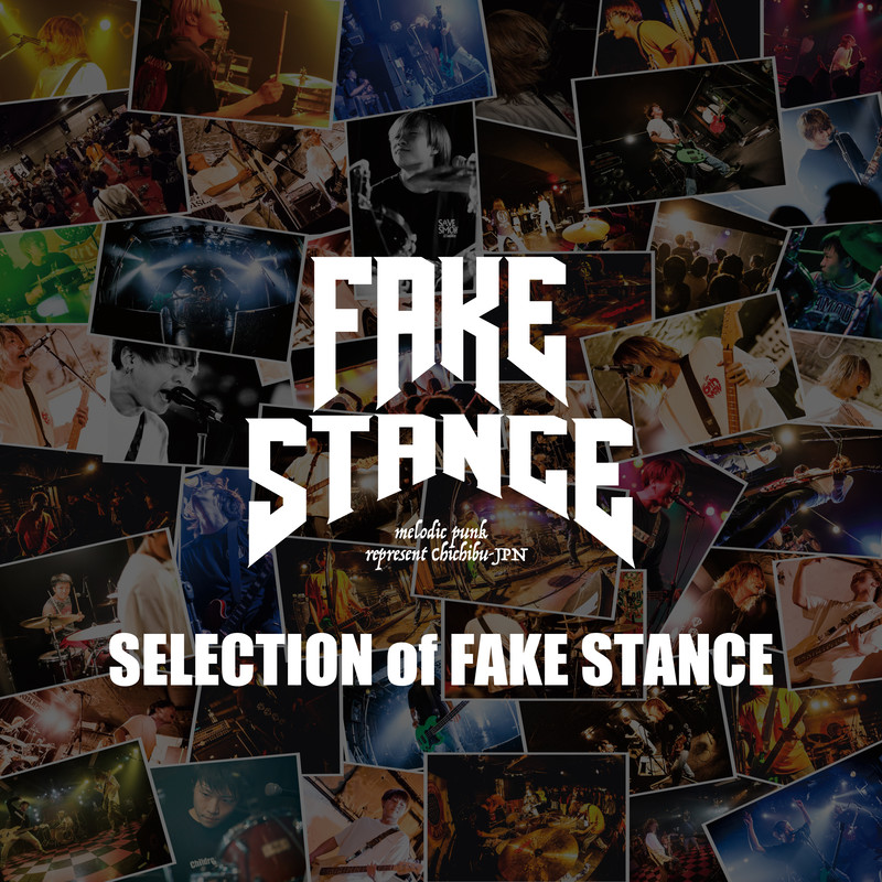 SELECTION of FAKE STANCE