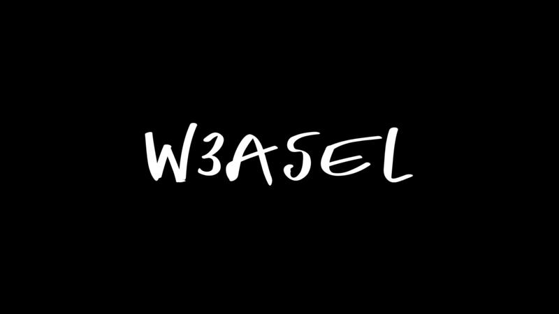 W3asel & DJ HAMMER