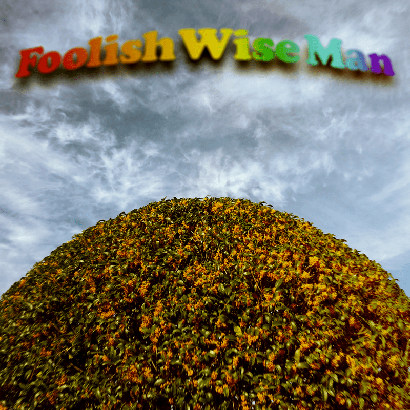 Foolish Wise Man
