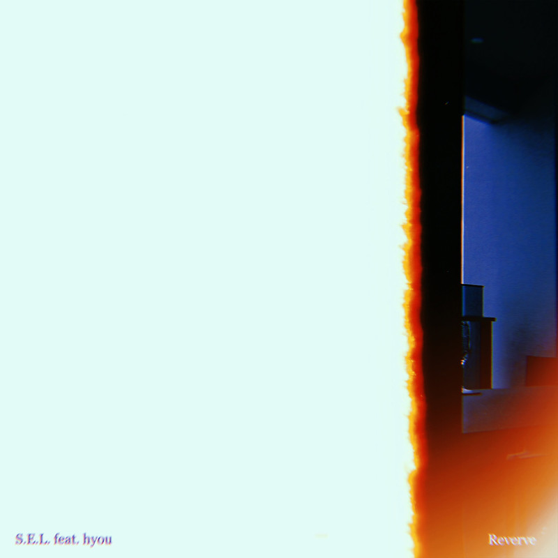 S.E.L. (feat. hyou)