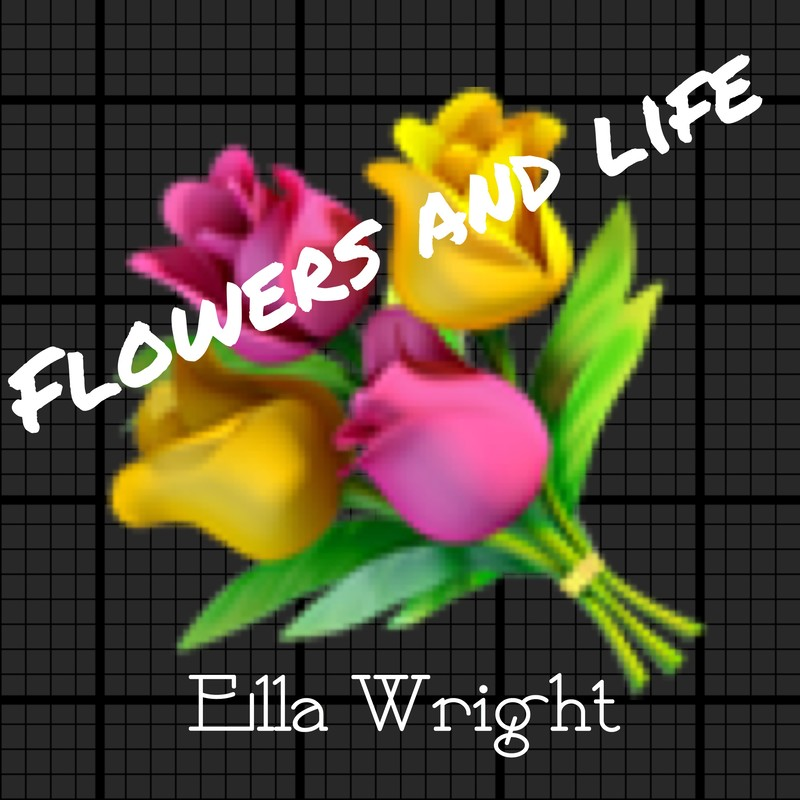 FLOWERS AND LIFE