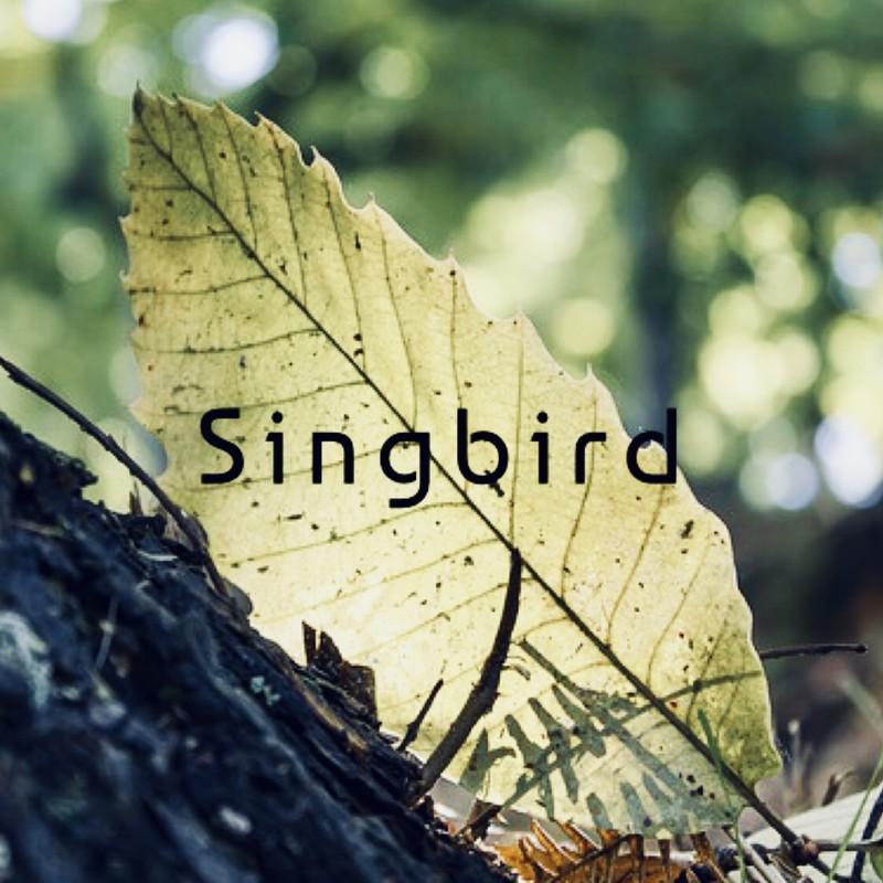 SingBirds