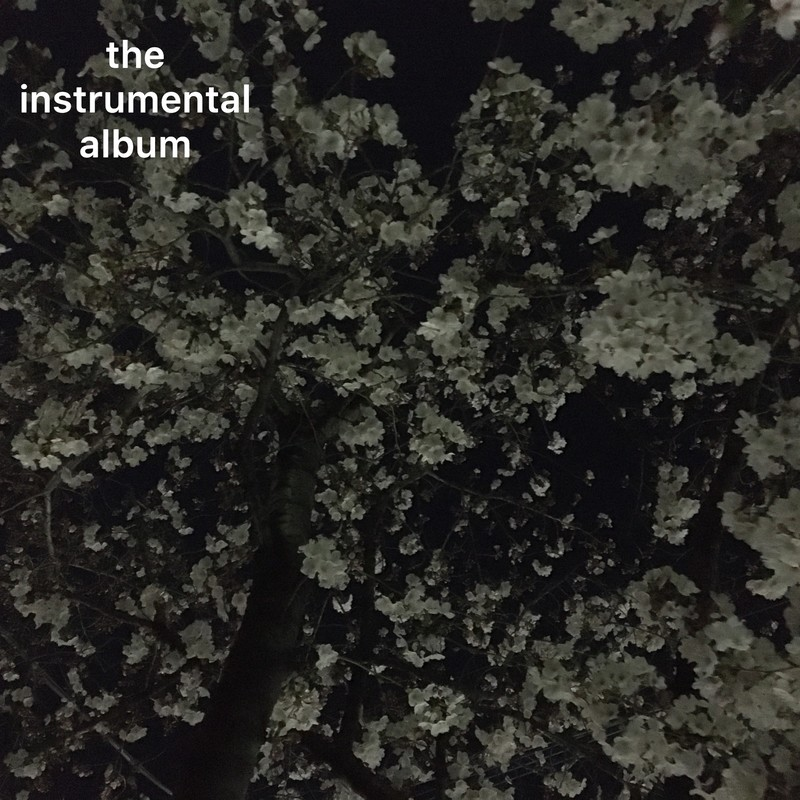 the instrumental album