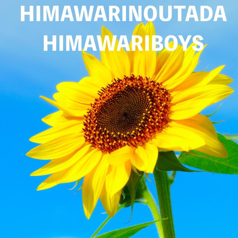 HIMAWARIBOYS