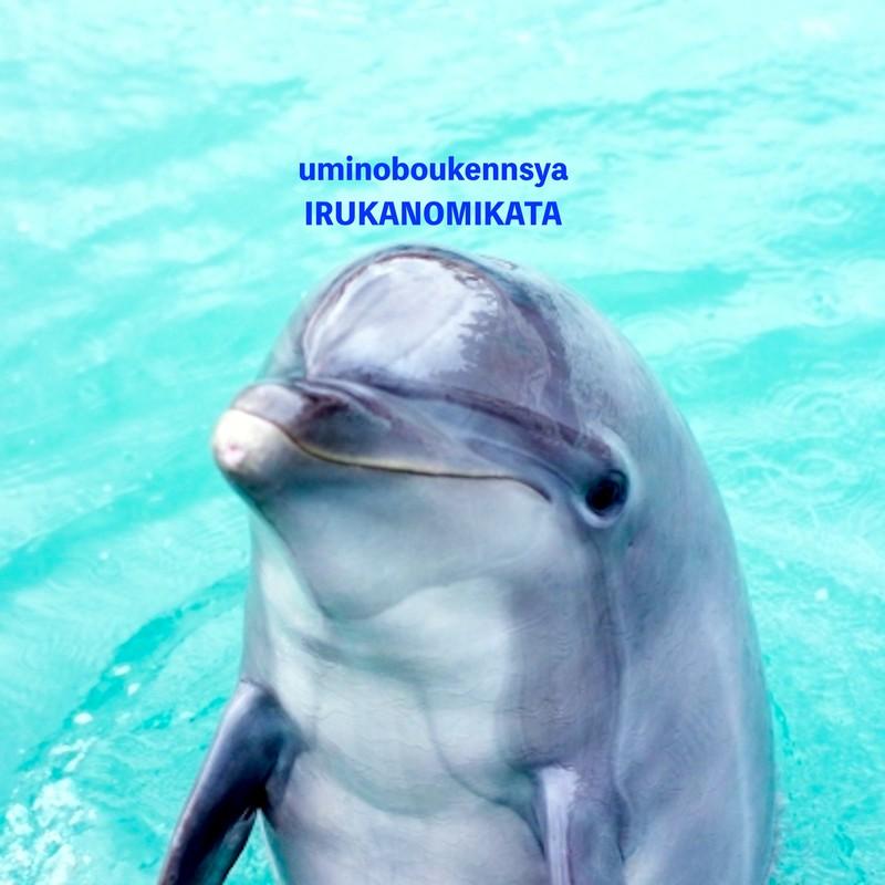 uminoboukennsya