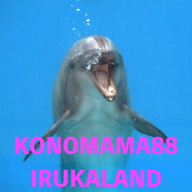 KONOMAMA88