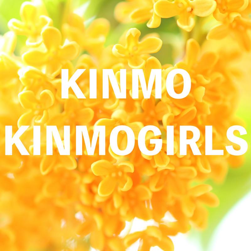 KINMO