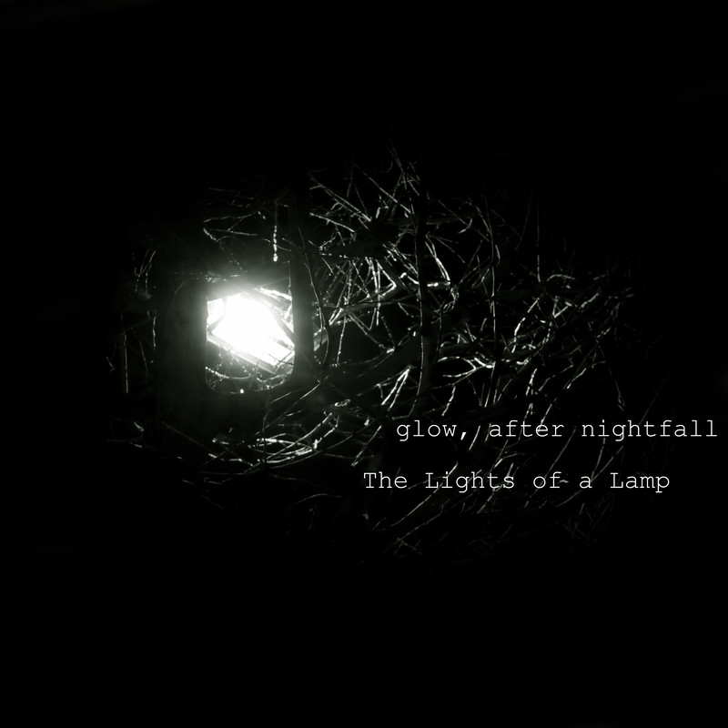 The Lights of a Lamp