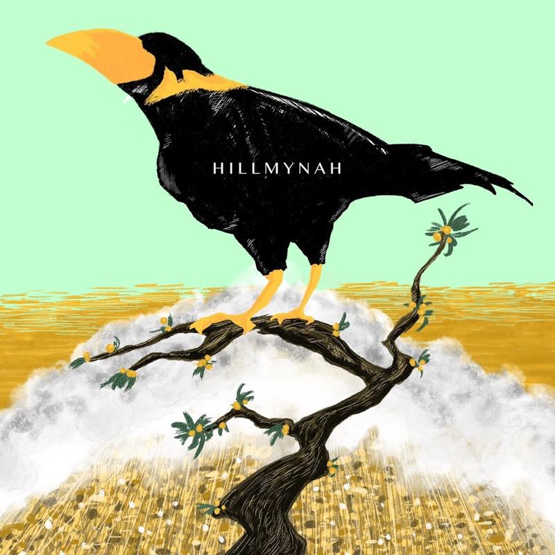 HILLMYNAH