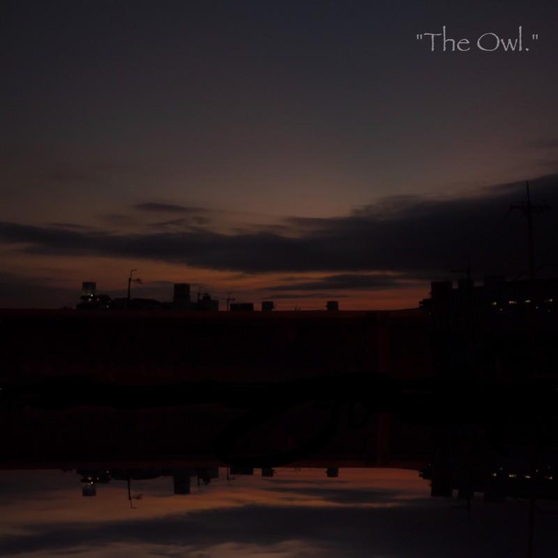 """The Owl."""