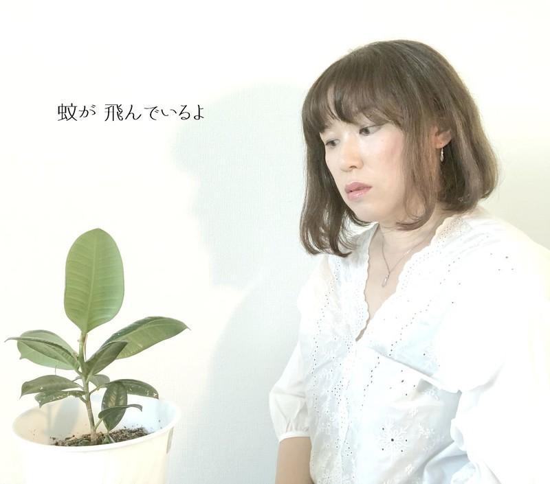 MayuHayashi