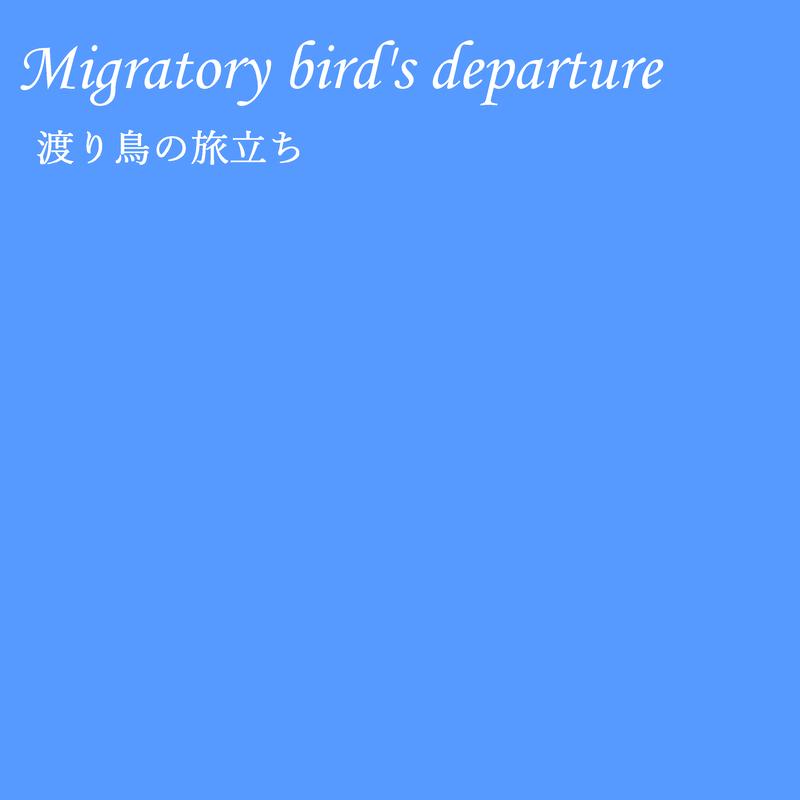 渡り鳥の旅立ち