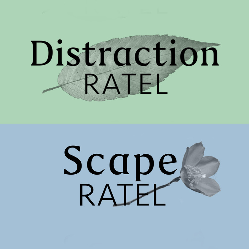 Distraction / Scape