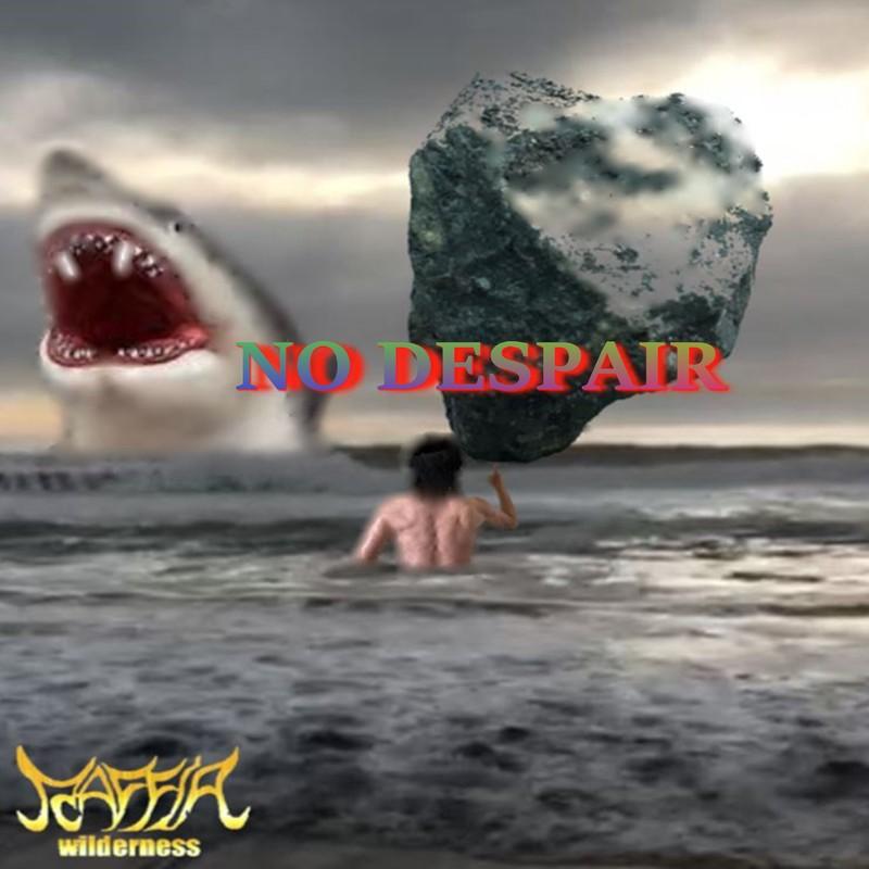 NO DESPAIR