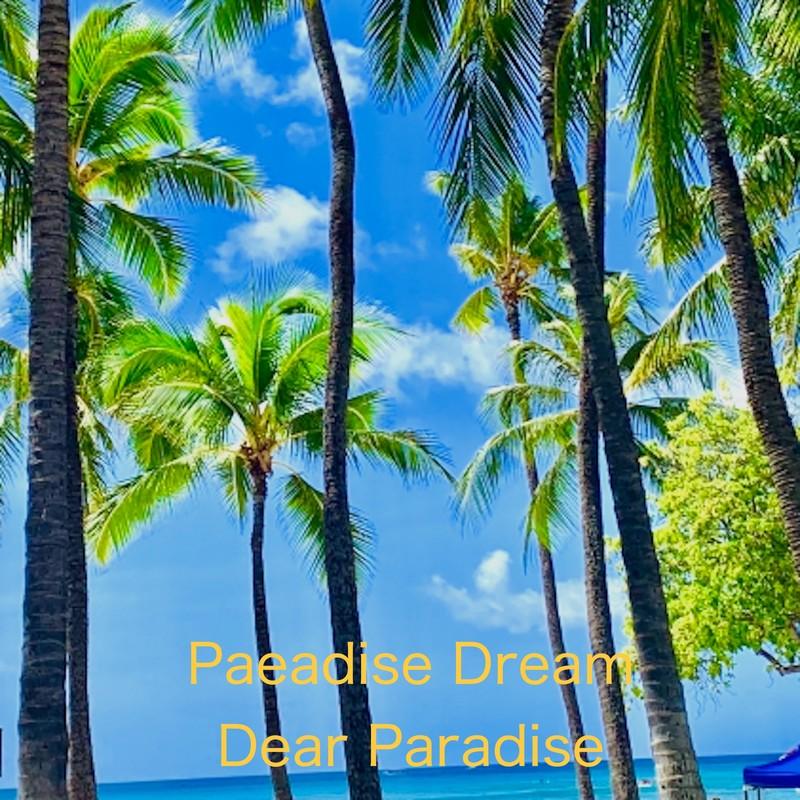 Paeadise Dream
