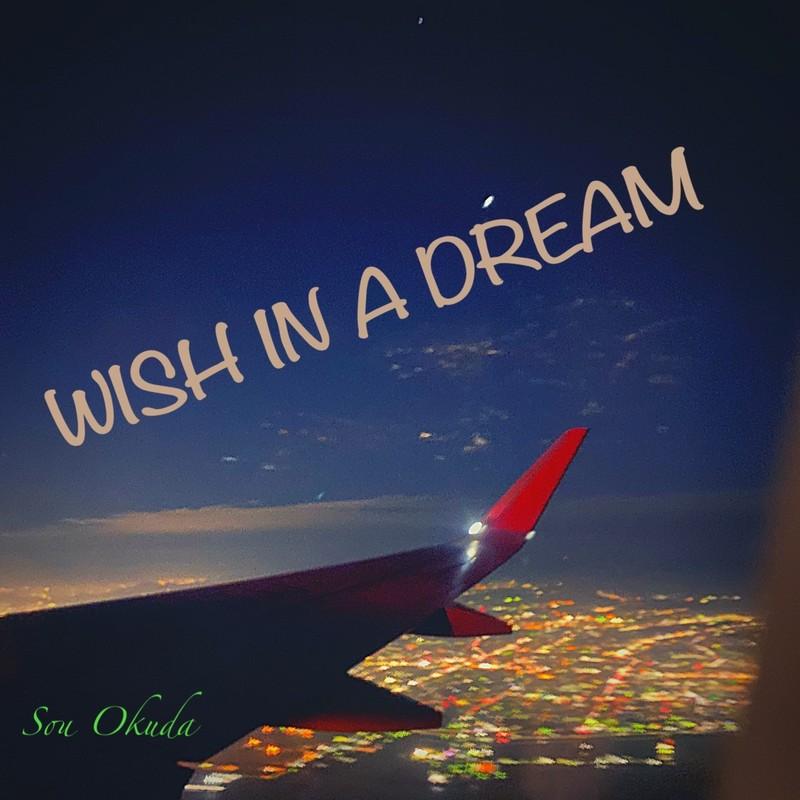 WISH IN A DREAM