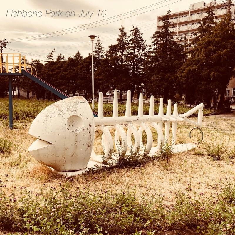 7月10日のフィッシュボーン・パーク