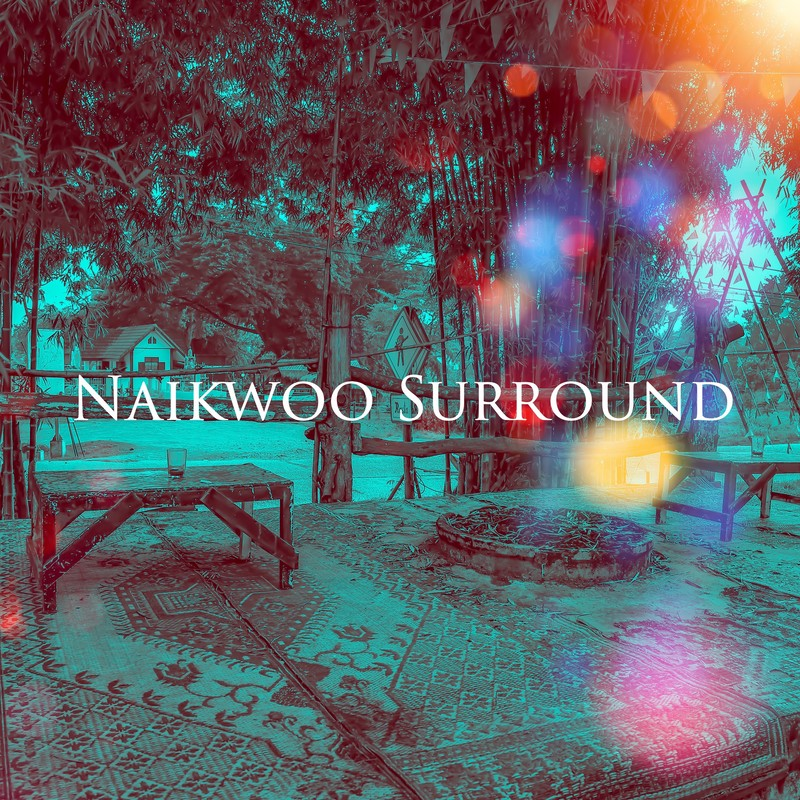 Naikwoo Surround 弐