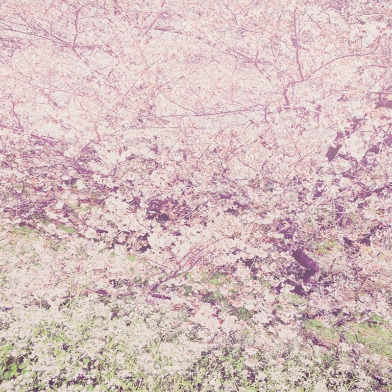Spring is gone