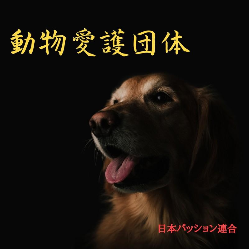 動物愛護団体