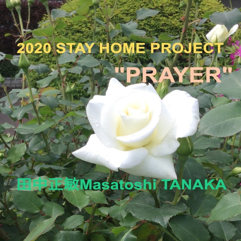 2020 Stay Home Project -PRAYER-