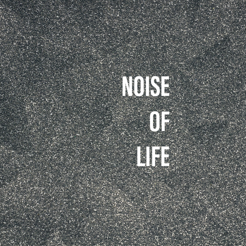 Noise of Life