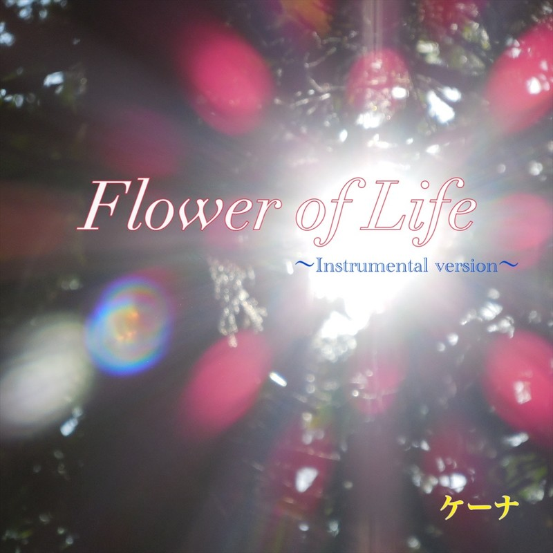 Flower of Life ~Instrumental version~