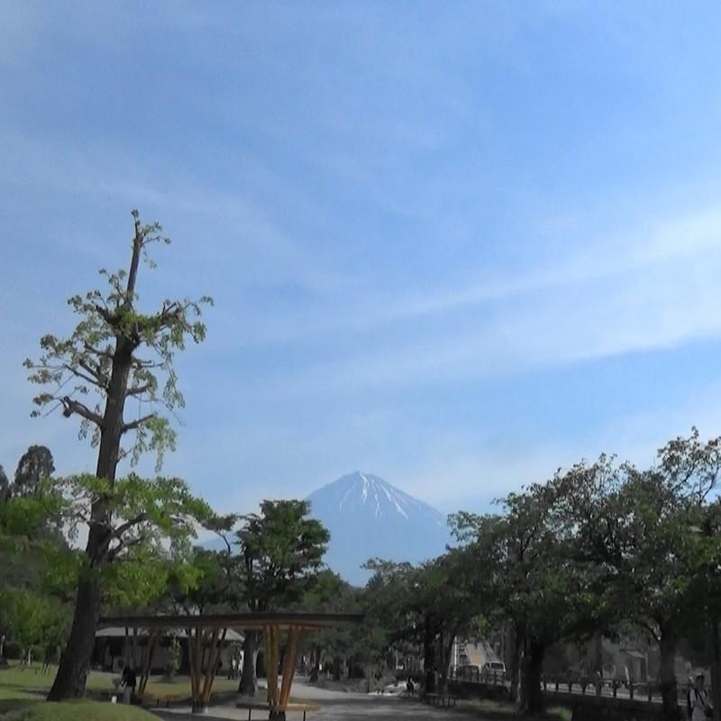 The starting point (feat. Sukiyaki)