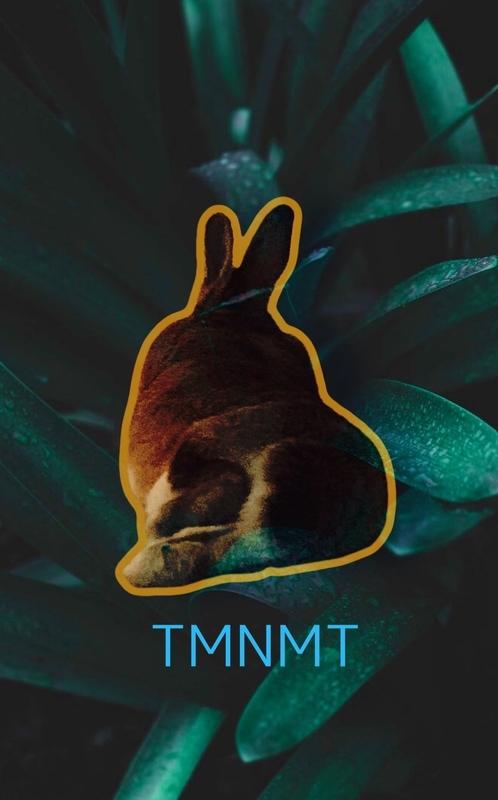 TNMNT