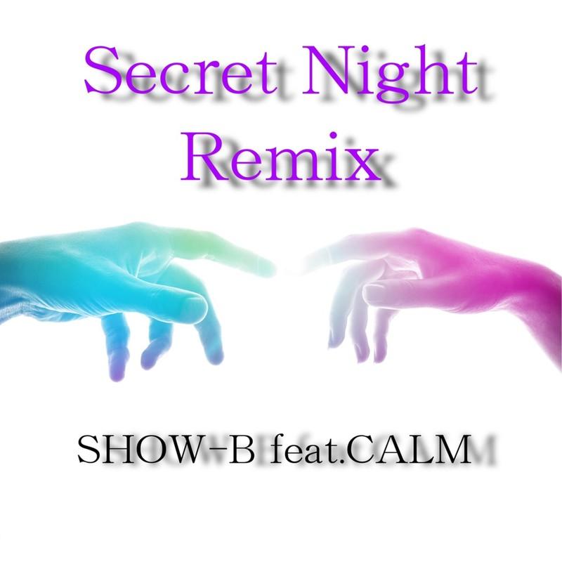 Secret Night (Remix) [feat. CALM]
