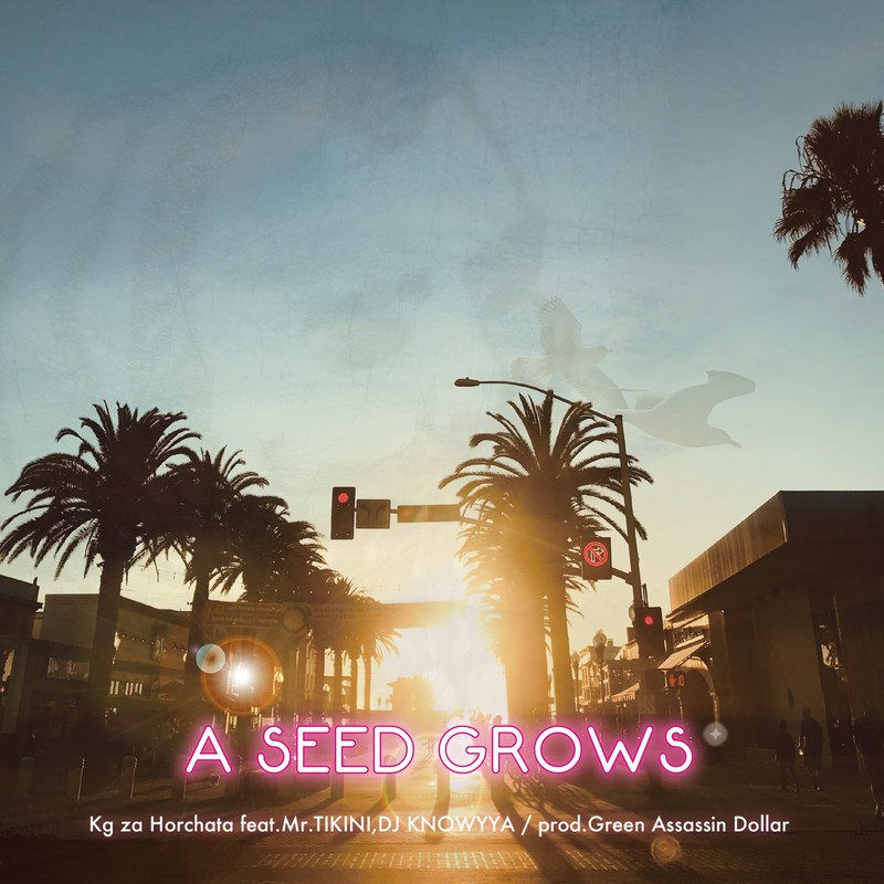 A SEED GROWS (feat. Mr.TIKINI & DJ KNOWYYA)