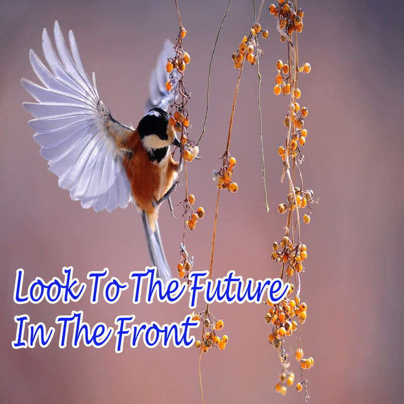 Look To The Future In The Front