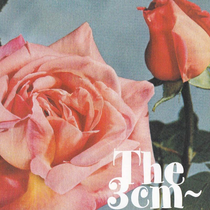 The 3cm~