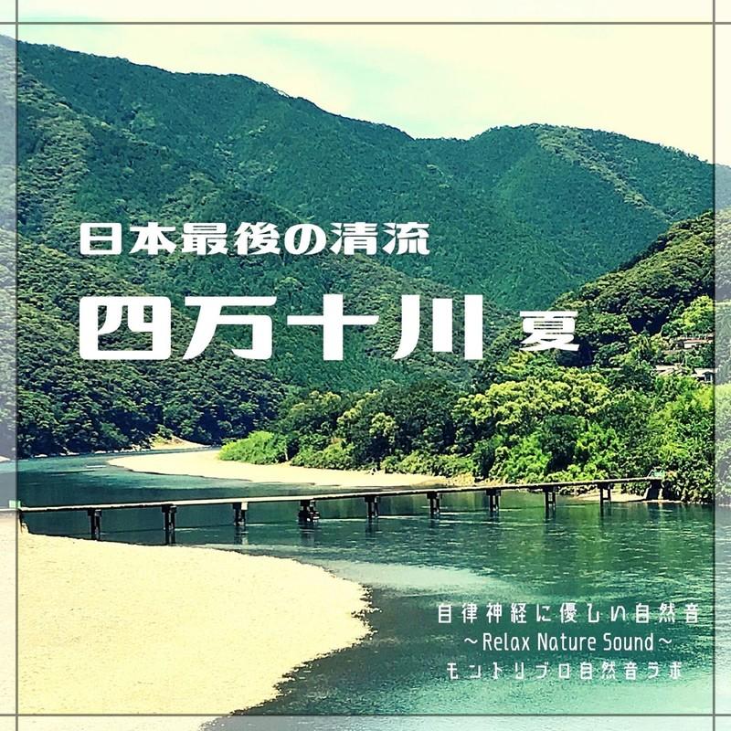 日本最後の清流 四万十川 夏 自律神経に優しい自然音 Relax Nature Sound