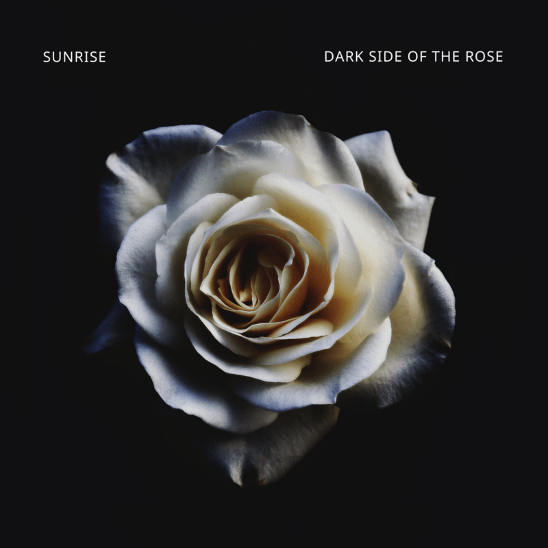 DARK SIDE OF THE ROSE