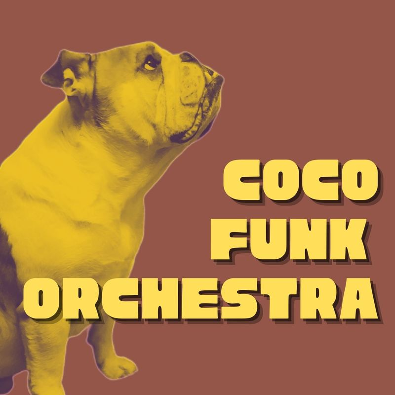 cocoFunk Orchestra with iqu