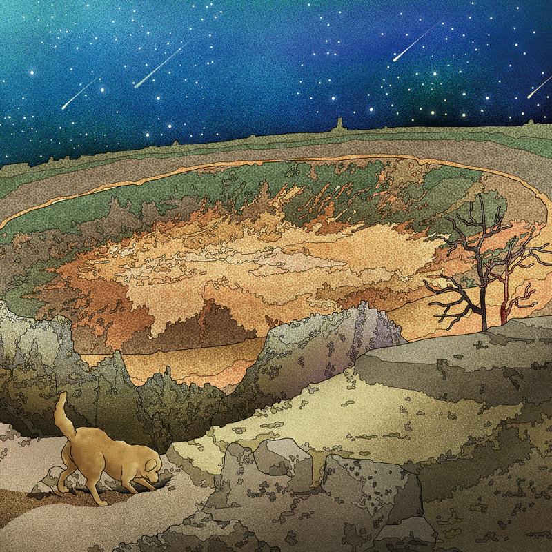 真夜中の化石