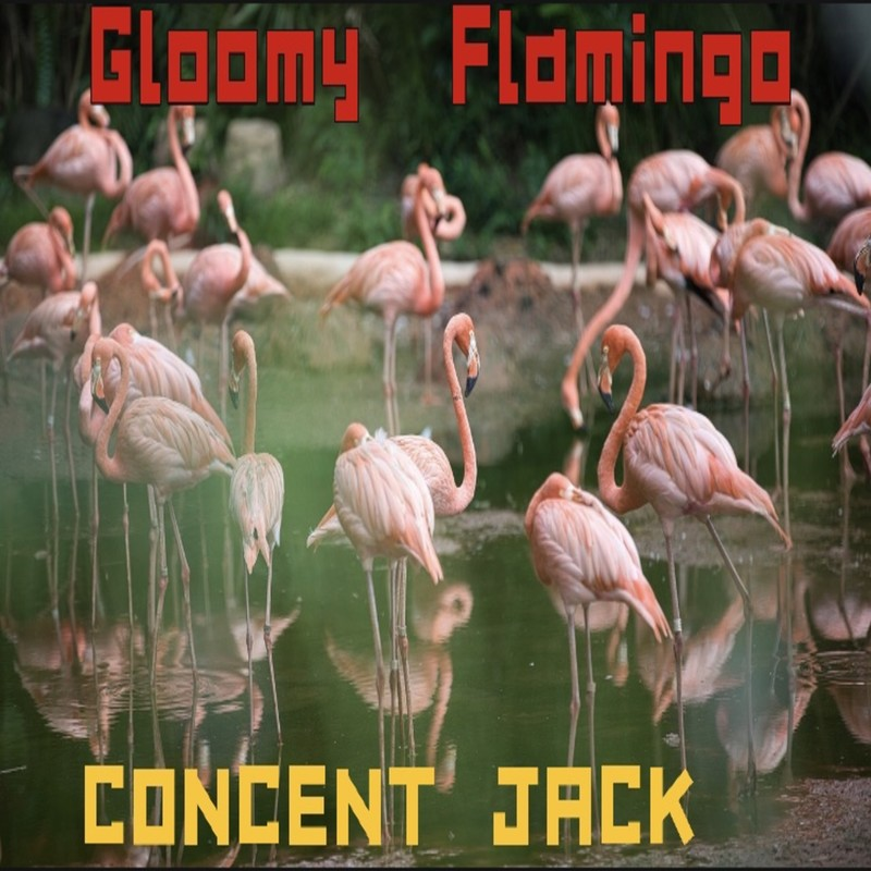 Gloomy Flamingo