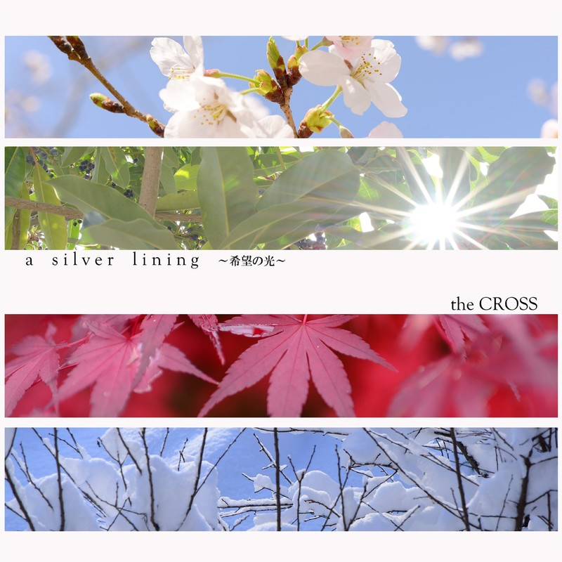 a silver lining ~希望の光~