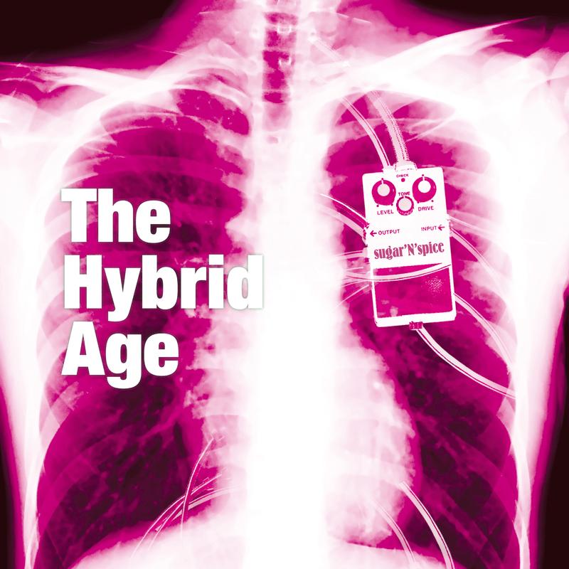 The Hybrid Age