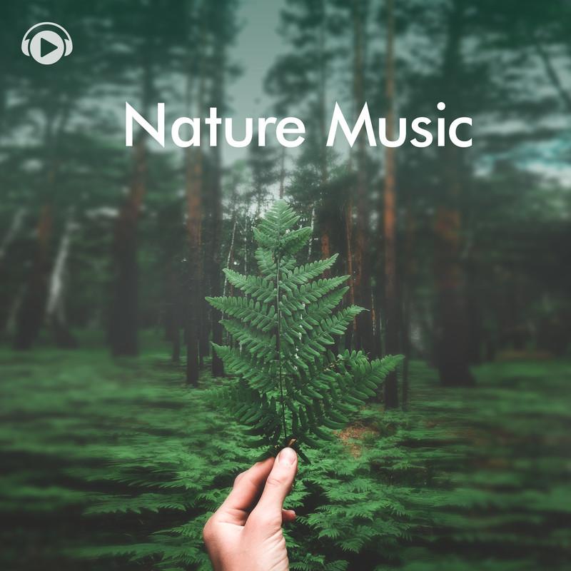 自然の音に癒される - スパや瞑想、ヨガ、睡眠などにもおすすめの1時間