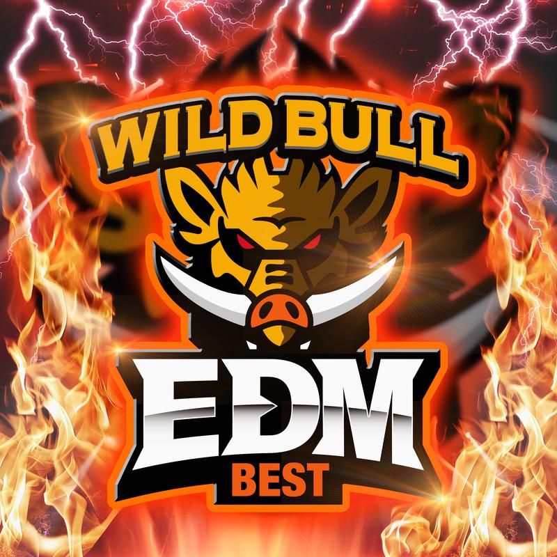 Wild Bull EDM BEST