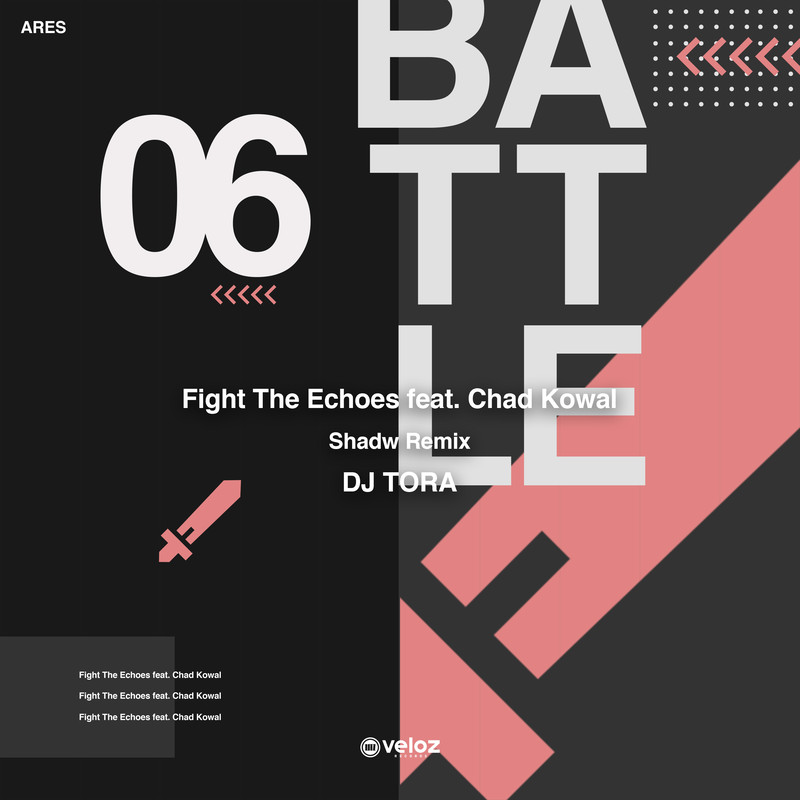 Fight The Echoes (Shadw Remix) [feat. Chad Kowal]