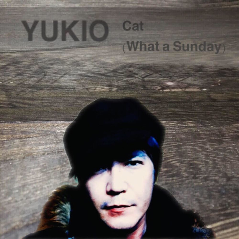 Cat -What a Sunday-