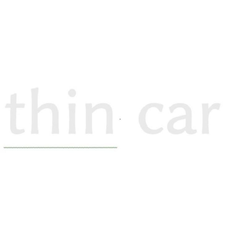 thin car